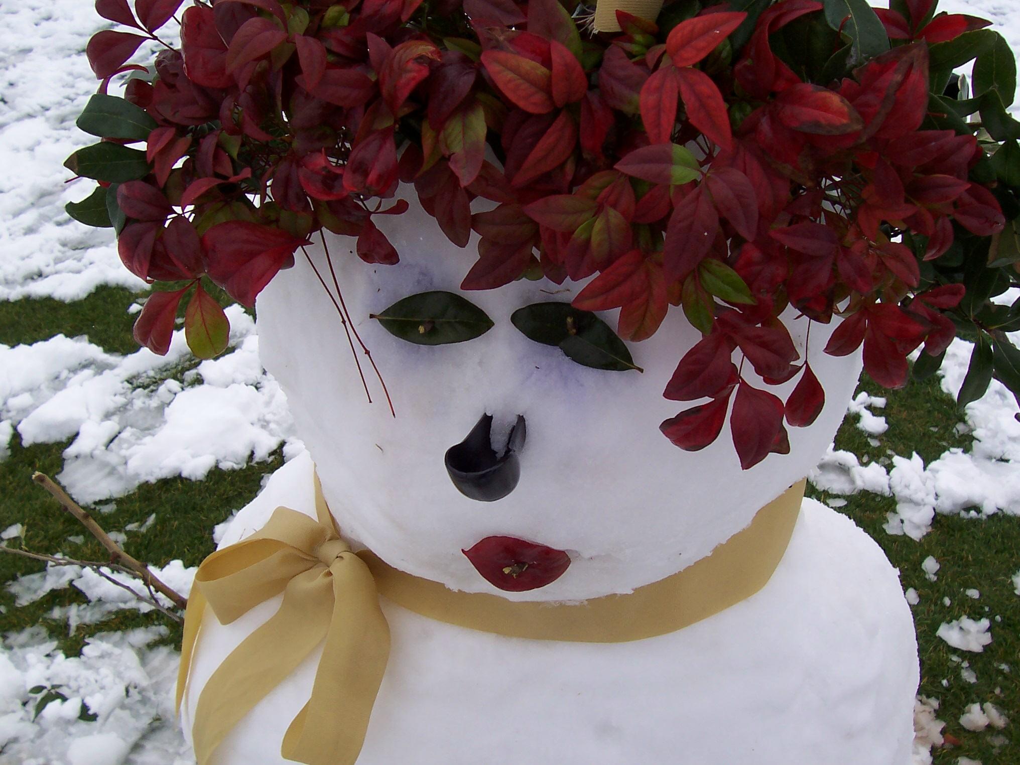snowgirl_i.jpg