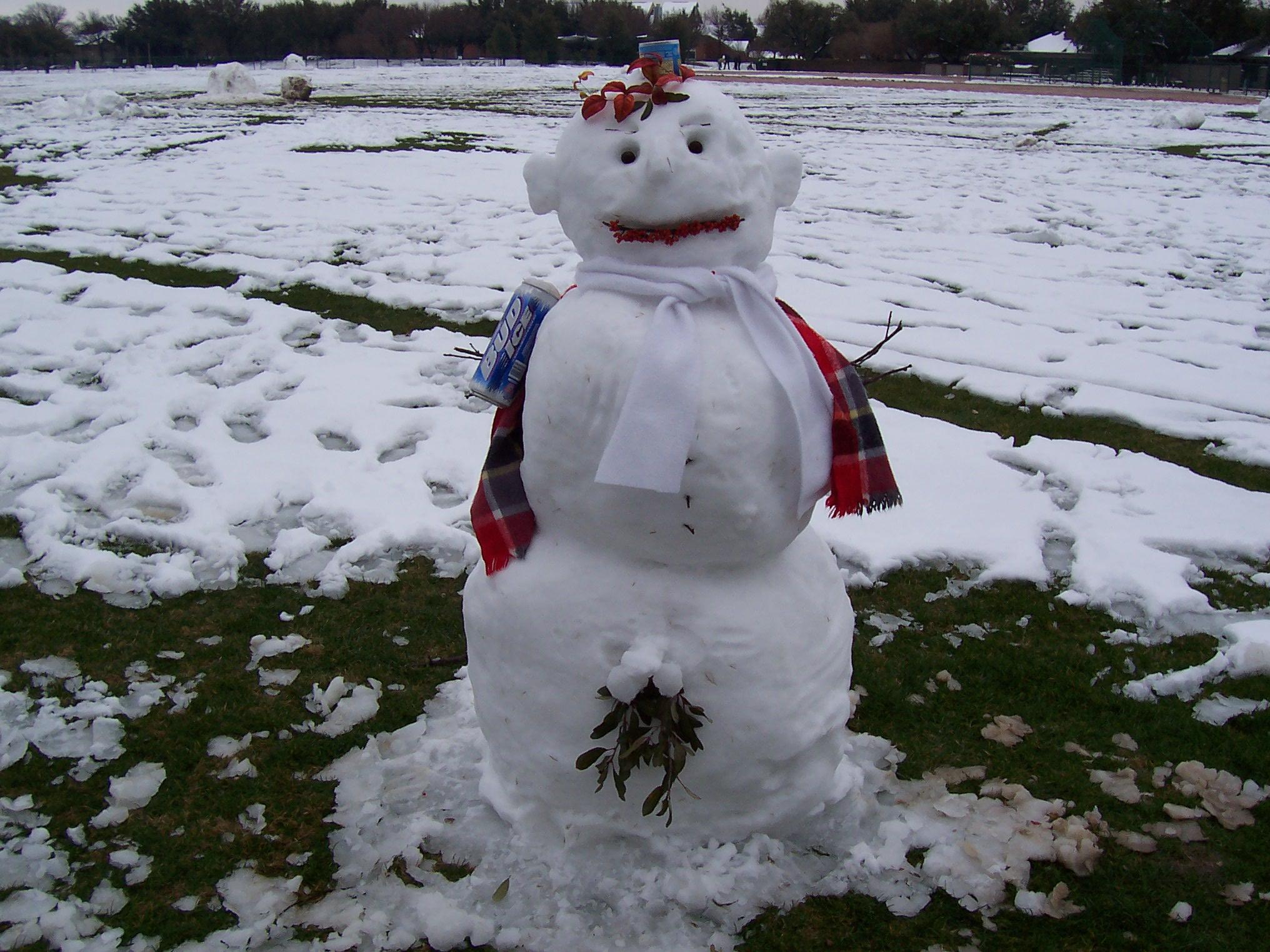 x_rated_snowman.JPG